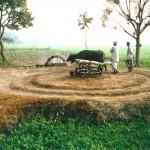 Persian Wheel