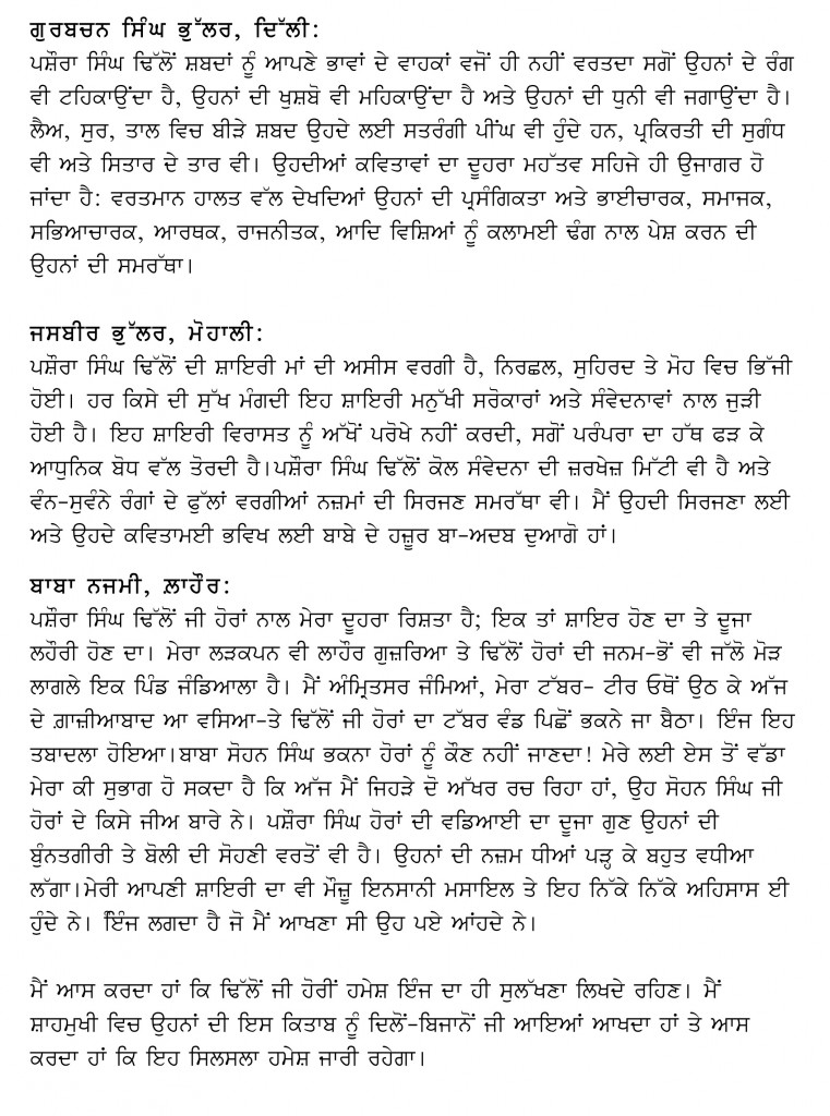essay on radio in punjabi language