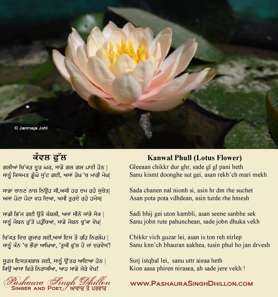 Kanwal Phull (Lotus Flower) Punjabi Poem by Pashaura Singh Dhillon