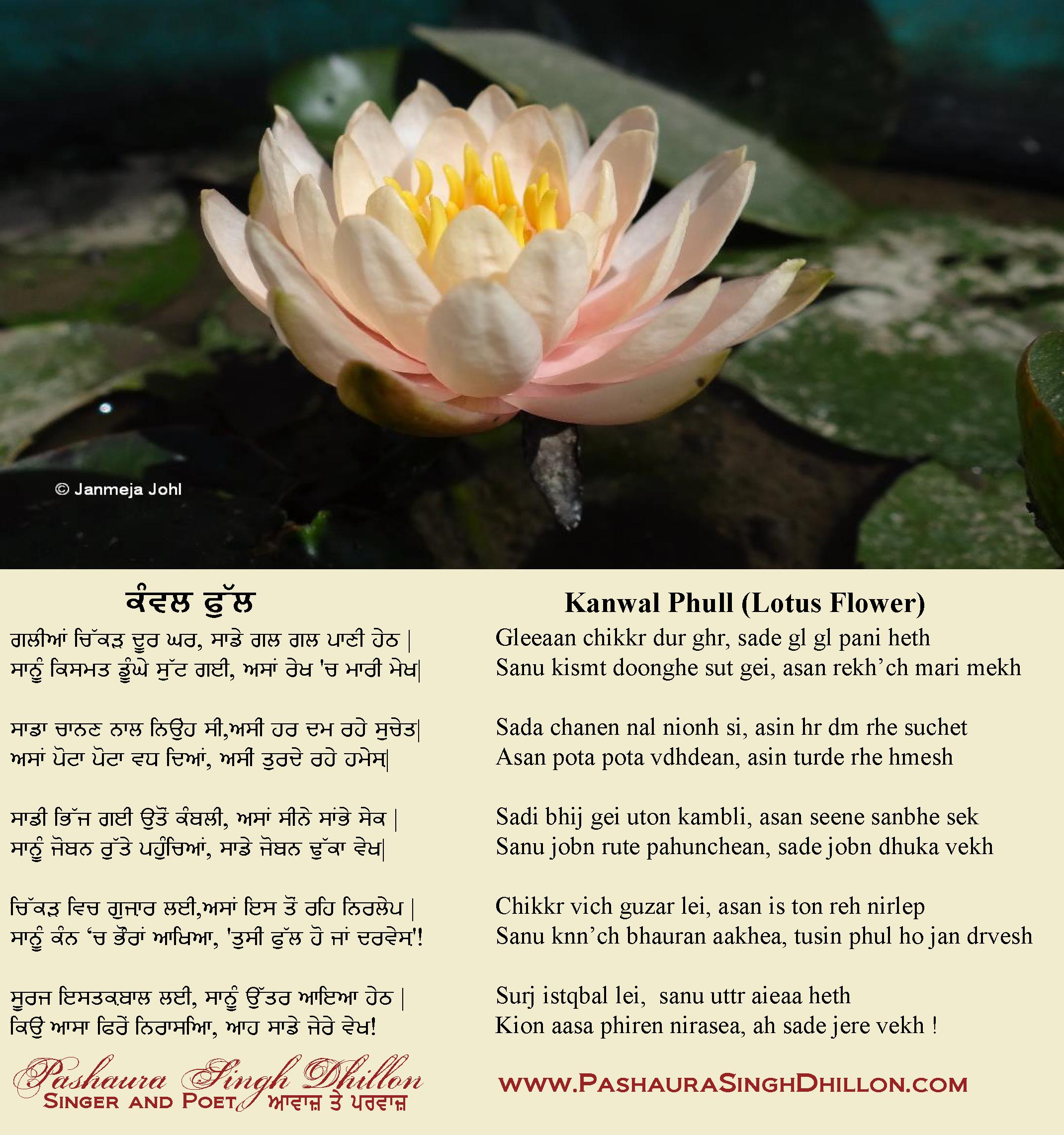 Lotus flower poems quotes gallery flower decoration ideas lotus flower poems quotes flowers gallery lotus flower poems quotes hd image mightylinksfo izmirmasajfo