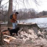 STUMP , MAN  & River