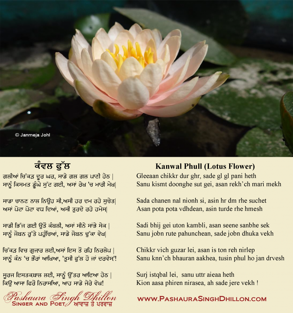 Nazm punjabi poem lotus flower gurmukhi nazm punjabi poem lotus flower gurmukhiromanized mightylinksfo